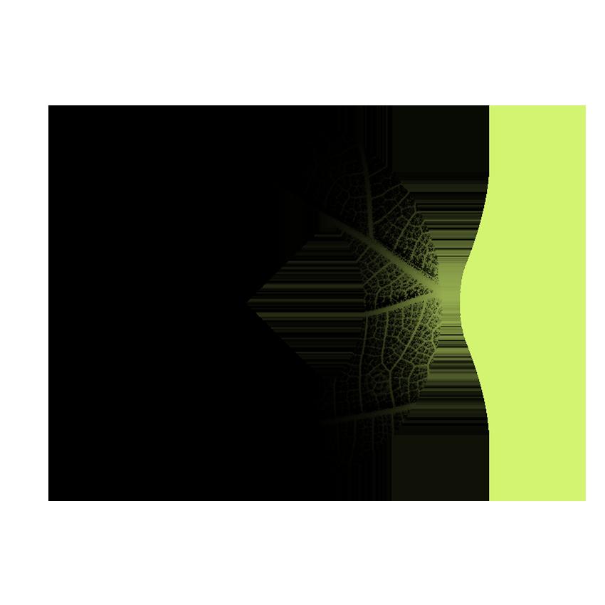 Открытость